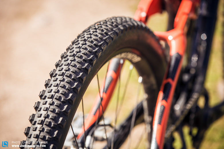 Rear tire is an Schwalbe Rock Razor semi-slick - who needs brake traction anyway? I switch tires quite often though, depending on the terrain.
