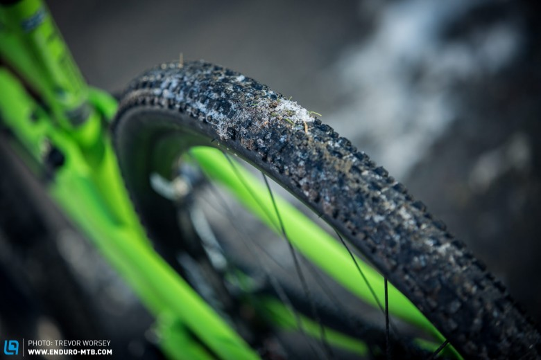 """The Maxxis Crossmark TR 29 X 2.1"""" EXO is a fast rolling tyre, but no good in the winter, a Maxxis Beaver will take its place until the trails dry out"""