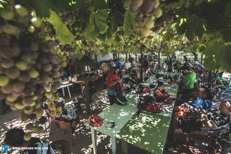 The grape vines provide some shade and good wine!