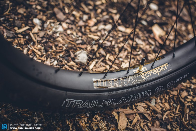 Extra wide: The WTB Scraper i45 rims give the tyres a generous base.
