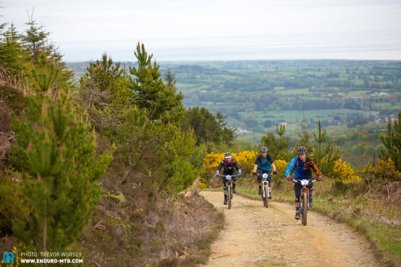 Big views over Wicklow, Carrick Mountain is only small but its trails pack a punch