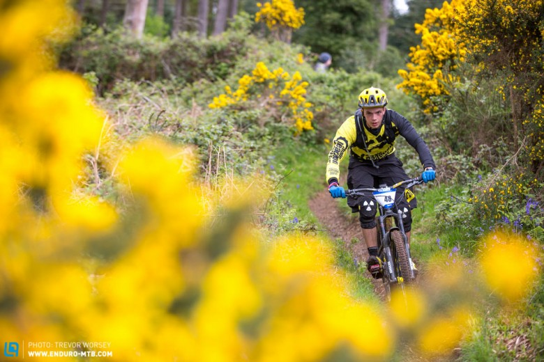 Gorse, great colours but terrible to crash into