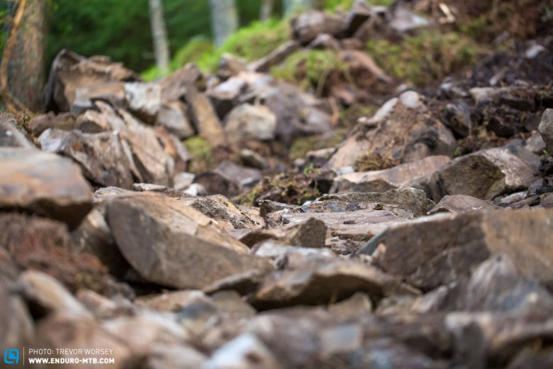This year there will be new sections, and more rocks - choose your sidewalls carefully.