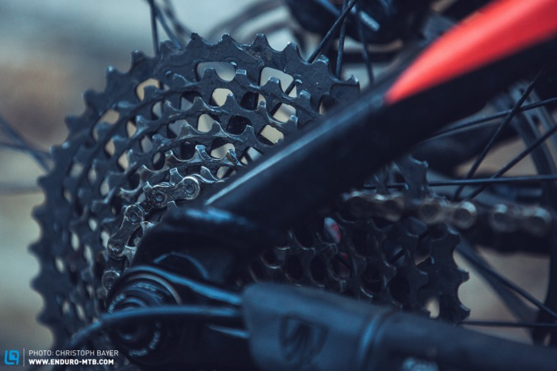 We love 11-speed, it suits any type of terrain and powers you through those hard rides.
