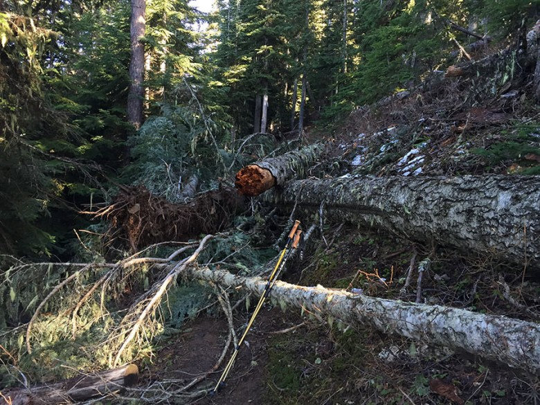 Federal agencies bar their own employees and volunteers from using wheelbarrows, chainsaws and other basic tools in Wilderness.