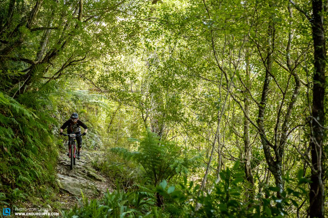 First Ride Review: RockShox Super Deluxe 2019   ENDURO