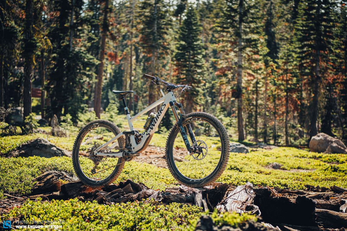 The new Specialized Enduro 29 in Californian woodland