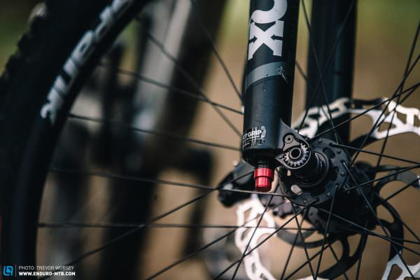 Editors' Choice: Specialized Stumpjumper EVO – The Sleeper