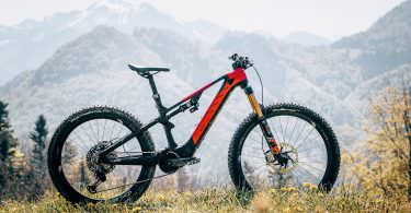 7733b882a5e First Test: Rotwild R.X750 – brand-new mountain goat from Germany