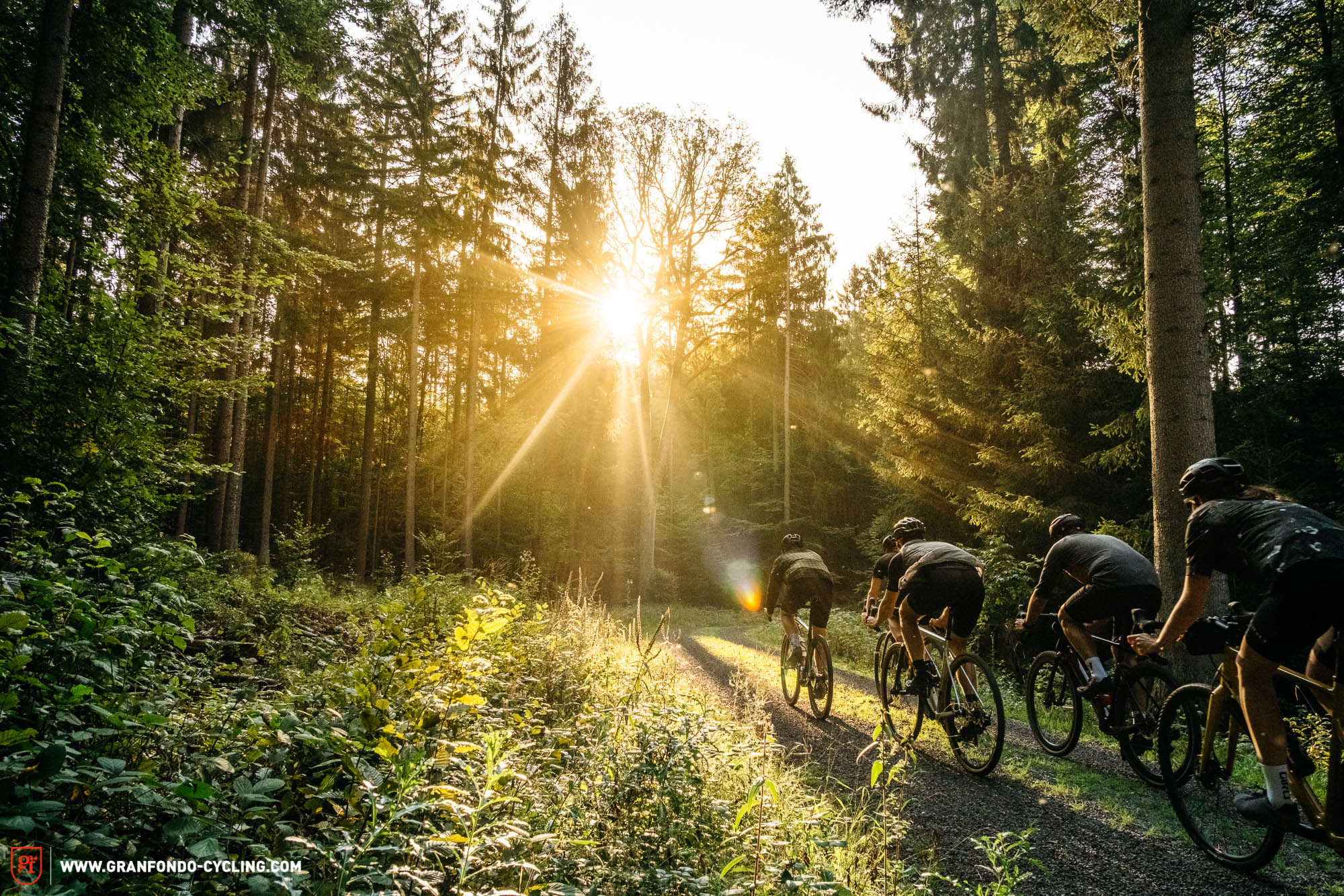 The best gravel bike of 2020 – 14 models in review | GRAN FONDO Cycling Magazine